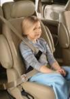Diono 兒童汽車安全帶調節器
